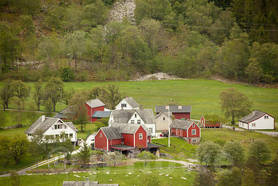 Cluster of Red and White Timber Houses in Rural Norway