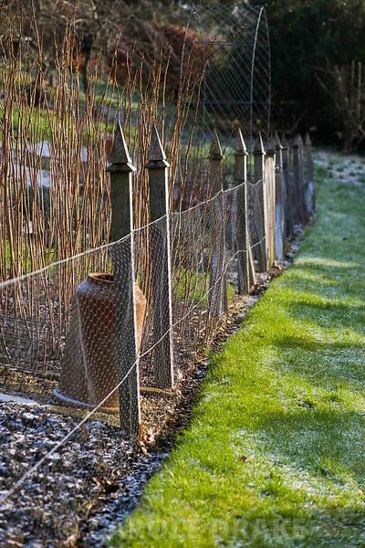 A fence of chicken wire protects the sloping kitchen garden.