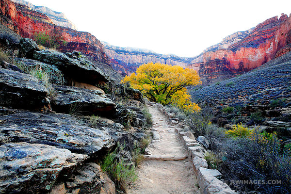 BRIGHT ANGEL TRAIL GRAND CANYON NATIONAL PARK ARIZONA