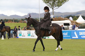 Canty_A_P_131114_Side_Saddle_1230