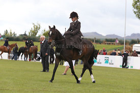 Canty_A_P_131114_Side_Saddle_1238