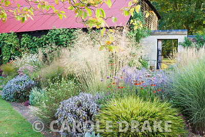 Corner border includes Stipa gigantea, Perovskia 'Blue Spire', purple sage, Hakonechloa macra 'Alboaurea', Helenium 'Moerheim Beauty', Salvia 'Hot Lips' and miscanthus. Broughton Buildings, Broughton, nr Stockbridge, Hants, UK