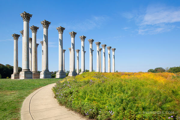 NATIONAL ARBORETUM CAPITOL COLUMNS WASHINGTON DC