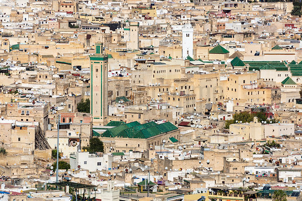 Elevated View of the Medina at Fes
