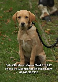 066_KSB_Marsh_Green_Meet_281012