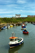 Seaton Sluice Afternoon