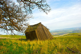 Old leaning shed