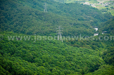 Aerial view of Electricity pylon in forest, Hong Kong