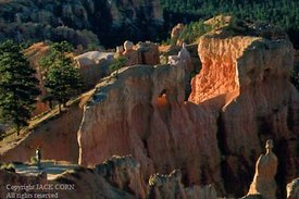 Figure in Queen's Garden, Bryce Canyon