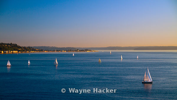 Northwest sailboats out for a sunset cruise with Alki Point in the background.