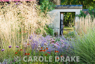 Corner bed includes Stipa gigantea, Perovskia 'Blue Spire', purple sage, Helenium 'Moerheim Beauty', Sedum telephium 'Matrona' and Calamagrostis x acutiflora 'Karl Foerster'. Broughton Buildings, Broughton, nr Stockbridge, Hants, UK