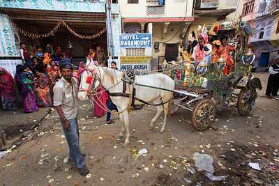 Horse-drawn carriage in a parade on Mahashivaratri (Shiva's birthday), Pushkar, Rajasthan, India