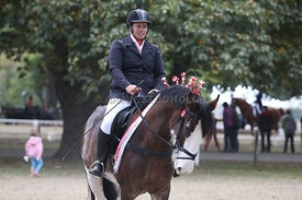 HOY_220314_Clydesdales_2386