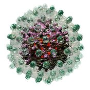 Hepatitis B virus particle on white