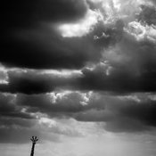 5184-Giraffe_under_the_clouds_Laurent_Baheux