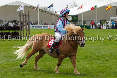 Badminton_2013_Sunday-075
