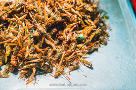 thailand insect street food in Bangkok