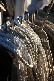 Ropes on belaying pins, four masted barque Sedov