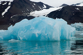Icebergs around Monaco Glacier near Woodfjorden, Northern Spitsbergen, Norway.