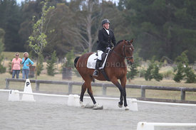 Canty_Dressage_Champs_071214_135