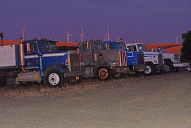 Trucks_parked_after_harvest