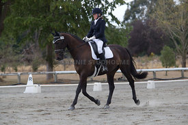 SI_Festival_of_Dressage_300115_Level_3_NCF_0100