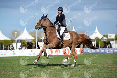 Mordasini Charlotte, (Swe) and TINY TOON SEMILLY