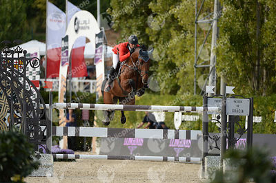 Paul ESTERMANN ,(SUI), LORD PEPSI during Longines Cup of the City of Barcelona competition at CSIO5* Barcelona at Real Club de Polo, Barcelona - Spain