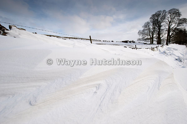 Patterns in snowdrift at back of a drystone wall after snowstorm,.Cumbria, UK
