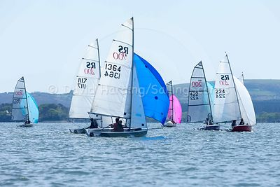 RS200 Open – Parkstone, 14 May photos