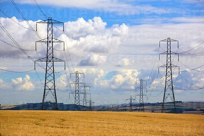 Converging Lines of Electricity Pylons Standing in a Field of Barley Against Fluffy White Clouds