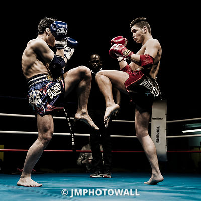 SuperFight 2015 photos