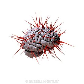 Human Brain with Spikes on white