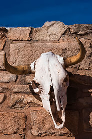 Bleached Cow Skull at Hubbell Trading Post