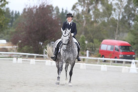 SI_Festival_of_Dressage_310115_Level_6_7_MFS_0839