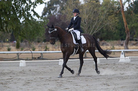 SI_Festival_of_Dressage_300115_Level_3_NCF_0099