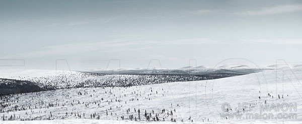 Winter hills panorama