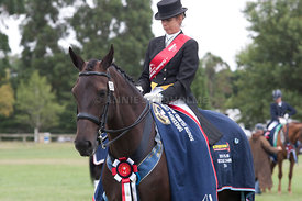 SI_Dressage_Champs_260114_415
