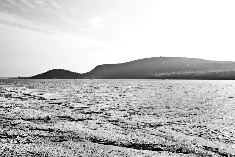 SOMES SOUND MT DESERT ISLAND ACADIA NATIONAL PARK MAINE BLACK AND WHITE