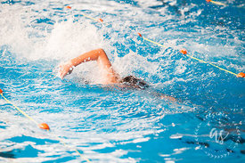 Waihi_Swimming_Sports_2017-48