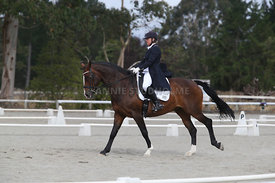 SI_Festival_of_Dressage_300115_Level_9_SICF_0475