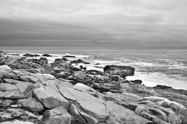 RUGGED NEW ENGLAND COSTALINE ACADIA NATIONAL PARK MAINE BLACK AND WHITE