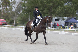SI_Festival_of_Dressage_300115_Level_6_NCF_0153