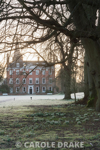 Dawn sunlight rises above the early C18th Queen Anne facade of Welford House illuminating the frosty ground dotted with snowdrops and aconites. Welford Park, Newbury, Berks, UK