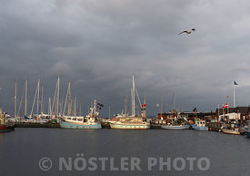 Dragør Harbour