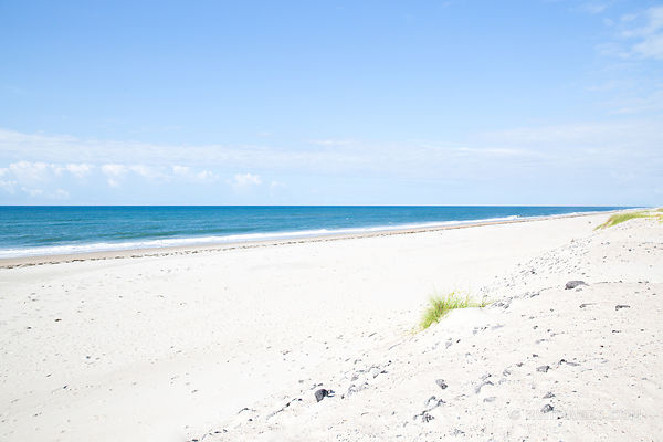 OCRACOKE ISLAND BEACH CAPE HATTERAS NATIONAL SEASHORE OUTER BANKS NORTH CAROLINA