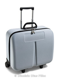 Travel Suitcase/with path