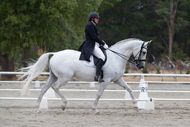 SI_Festival_of_Dressage_300115_Level_6_NCF_0181__low_res
