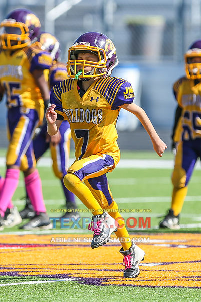 10-21-17_FB_Jr_PW_Wylie_Purple_v_Titans_MW00409