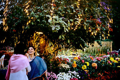 India - Delhi - Women gossiping amongst flowers in the garden at a society party